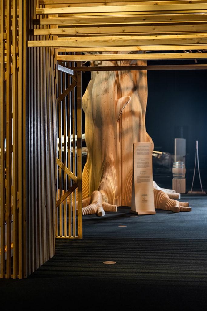 SuperPUU-näyttely esittelee puun supervoimat: sen monet hienot ominaisuudet ja käyttömahdollisuudet.