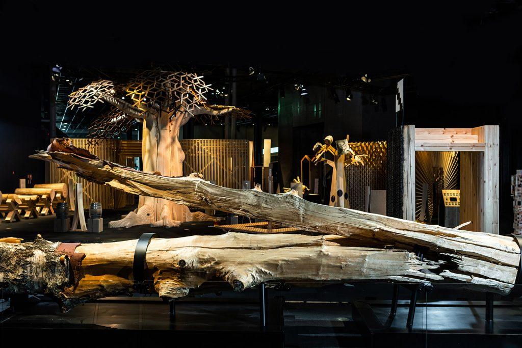Puu on hiilinielu – materiaali kestävien yhteiskuntien rakentamiseen.